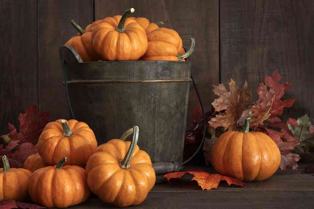 Fall-pumpkin-decor-on-a-table.jpg