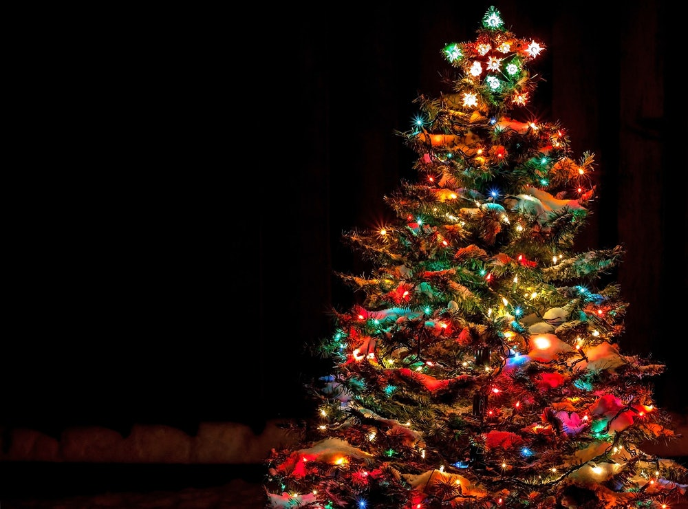 Holiday-tree-with-lights.jpg