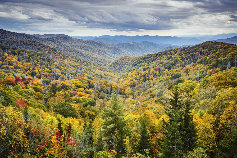Fall-colors-covering-the-Smoky-Mountains.jpg